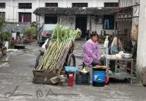 Hongcun (50)