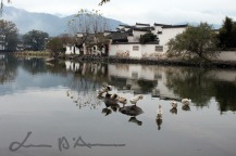 Hongcun (73)