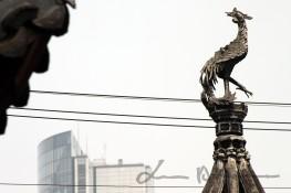 Shanghai and Suzhou (33)