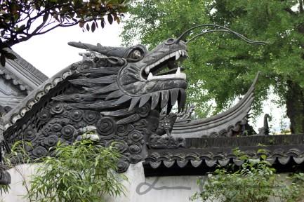 Shanghai and Suzhou (37)