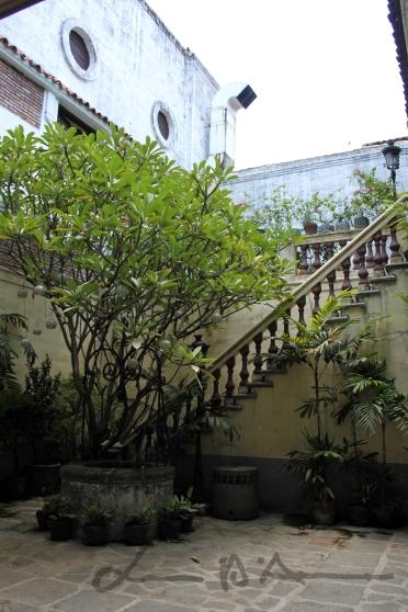 Manila (7)