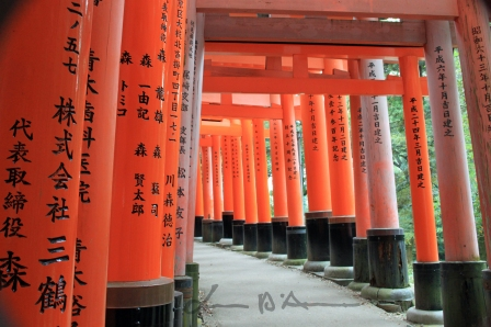 3-Kyoto (14)