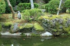 Kyoto 5 (10)
