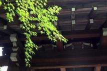 Kyoto 5 (26)
