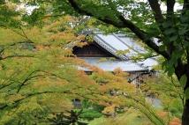 Kyoto 5 (30)