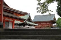 Kyoto 5 (46)