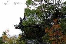 Kyoto 5 (60)