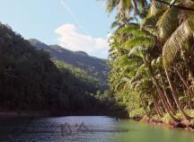 Cebu-Bohol '15 (3)