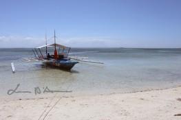 Cebu-Bohol '15 (35)
