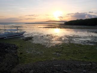 Cebu-Bohol '15 (9)