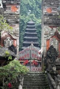 Bali (111)