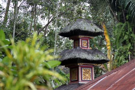 Bali (112)