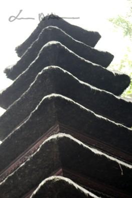 Bali (113)