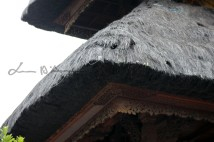 Bali (132)