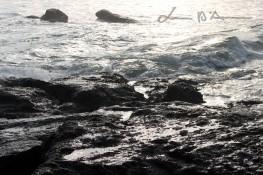 Bali (137)