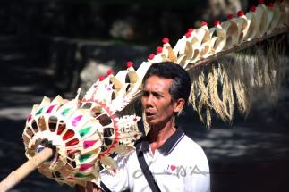 Bali (35)