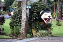 Bali (70)