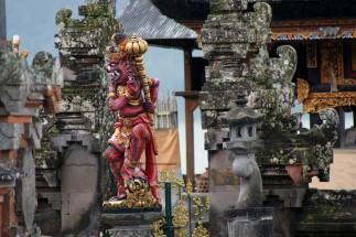 Bali (88)